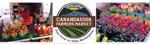 Ryan Spadafora live music at the Canandaigua Farmer's Market August 2020